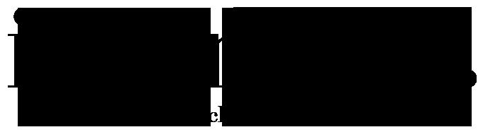 Logo Iwan & Co.